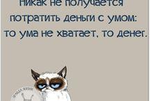 Юмор , Цитаты Мудрость