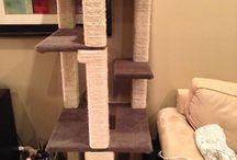 Cat towers / by Carol Benton