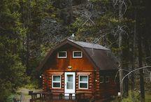 cabane en forêt