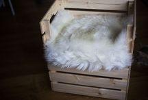 Ikea Hacks for Kitty