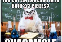 TEACHER HUMOR / by Amber Turnage
