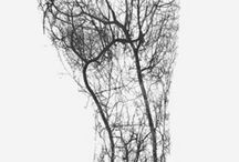 Trees and bodies / Combination trees and body, drawings photos and Land art