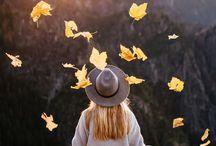 Life in autumn