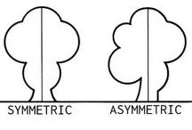Design Element - Symmetry