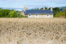 The Mill House, Isle of Wight / Luxury 5 Star Gold Award Self Catering Holiday Home on the Isle of Wight
