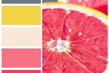 Colors for Paterns