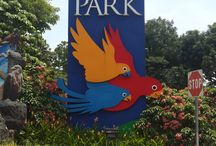 Jurong Bird Park 2014 / Pictures from Jurong Bird Park in Singapore September 2014