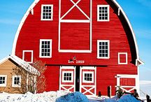 Barns to Love / by Rosalin O'Rear