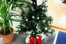Navidad en ZIZER