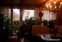 kwiatowy pokoj / to moje kwiaty w mieszkaniu