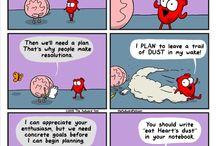 ❤Heart and brain
