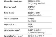 Chinese/Mandarin/Cantonese