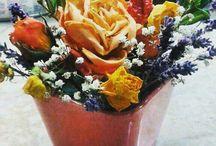 si dupa ce se usuca florile sunt frumoase