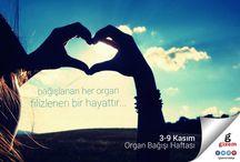 Gizem Mobilya Organ Bağışı Haftanızı Kutlar / Gizem Mobilya Organ Bağışı Haftanızı Kutlar. http://gizemmobilya.com.tr/ #GizemMobilya #OrganBağışıHaftası