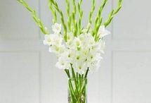 Hollard Reception Flowers