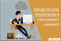 How Can You Avoid Procrastinating In Your University Assignments?