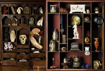 Curiosities & Collections