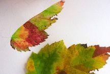 pintar hojas de otoño