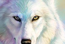 Białe zwierzeta
