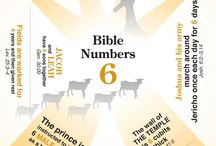 The Bible - What do the numbers mean?
