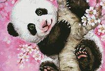 panda in cires