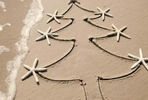 Christmas in Florida ideas