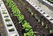 jardín y huerta