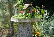 Outdoor ideas / by Diane Spoklie