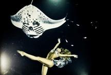 Hannah mermaid with manta rays