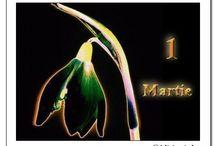 1 MARTIE