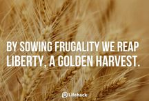 Frugal/Green living / by Chickpea