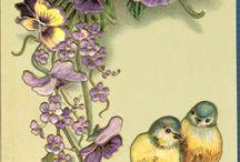 Menekşe ve kuşlar