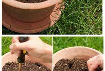 engrais naturelles potager et fleurs extérieures