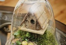 Cloche Ideas / by Katherine Rodgers