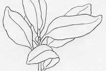 Drawings of plants only