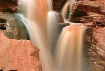 Capitol Reef National Park / by Will East