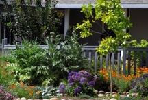 Garden/Outdoor spaces