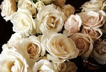 Krystal Miller's Wedding Bouquet ideas / creating ideas/options for Krystal Miller's flowers