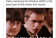 DID YOU PUT YOUR NAME IN THE GOBLET OF FIRE??!