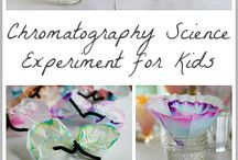 Science Experiments / by Ann Knecht