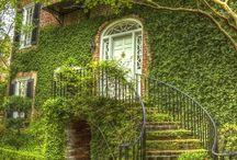 Növénnyel befuttatott házak, építmények / Azt mondják, romlik alatta a fal, de nekem mindig tetszett!