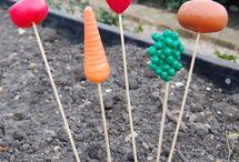 Growing veg with kids
