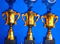 Jual Trophy Plastik Murah / Jual Trophy Piala Penghargaan, Trophy Piala Kristal, Piala Unik, Piala Boneka, Piala Plakat, Sparepart Trophy Piala Plastik Harga Murah