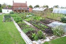 Future Garden!