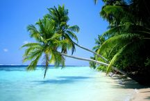 Tropical Destinations / Beautiful beaches and tropical islands