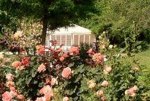 Museo della Rosa Nascente / Il Museo Della Rosa Nascente si trova In questo luogo magico, dove le rose canine e le orchidee selvatiche vivono da epoche lontane: 17 roseti tra piccoli e grandi con 1200 piante e 95 varietà, che si sviluppa tra i cortili delle mura medievali, nel parco e nella vallata del Castello di Gropparello