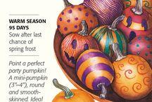 Botanical Interests - Pumpkin