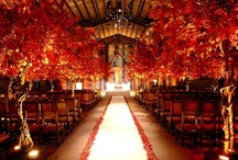 Seasons / Spring and Autumn. Seasonal Colours.  / by Anna Keppo