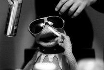 Kermit / by Vicentín Atope