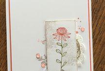 SU flowering fields